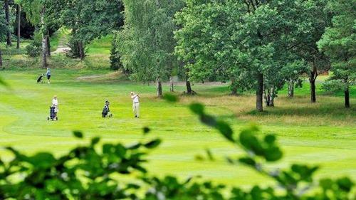 golfclub_falkenstien02