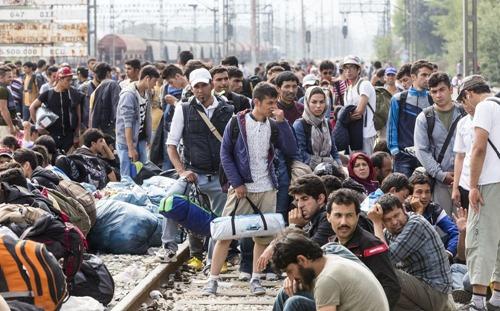 abgelehnte_asylbewerber