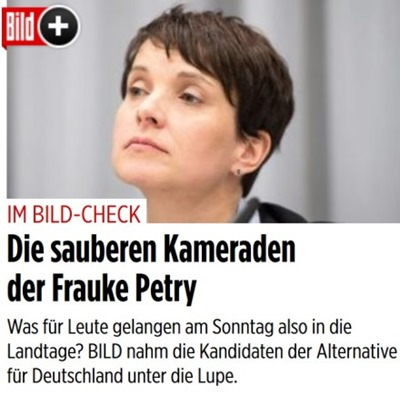 saubere_kameraden_frauke_petry