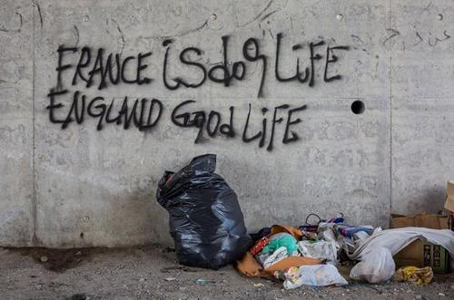 france_is_dog_life