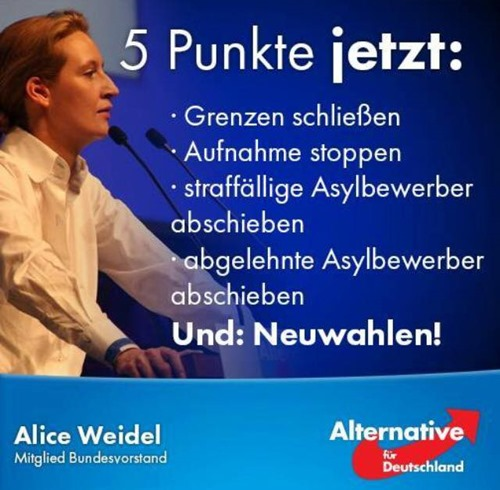 alice_weidel_fuenf_punkte_jetzt