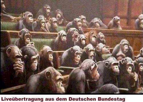 liveuebertragung_aus_dem_deutschen_bundestag
