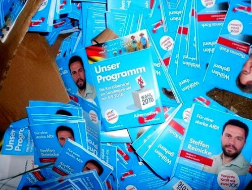 afd_wahlprogramm