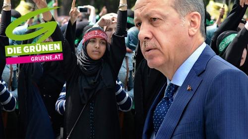 gruene_erdogan
