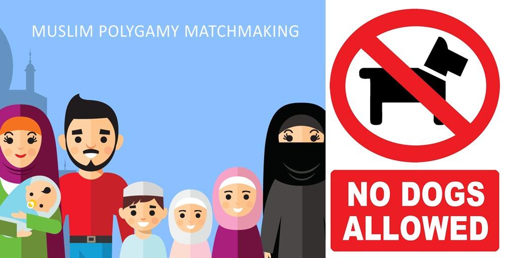 Südasiatische Dating-Website toronto