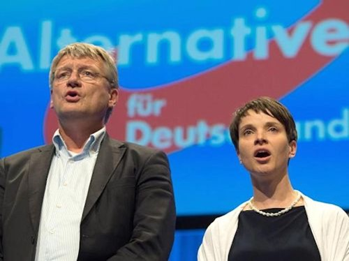 joerg_meuthen_frauke_petry
