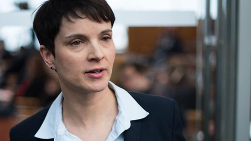 frauke_petry_afro_arabisches_lumpenproletariat