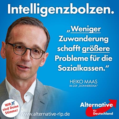 intelligenzbolzen_heiko_maas