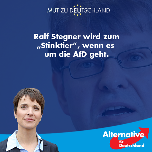stinktier_ralf_stegner