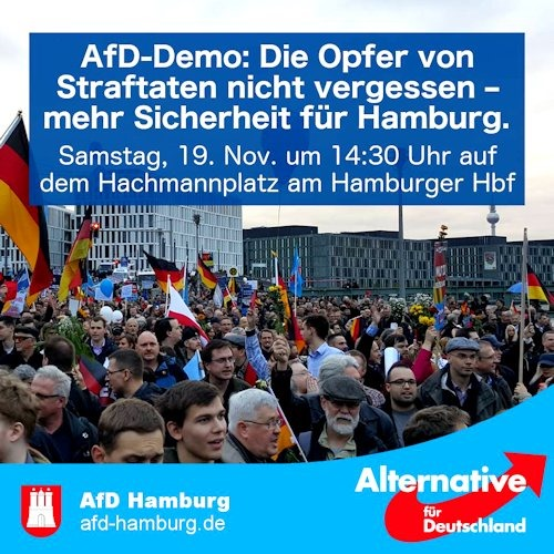 afd_demo_hamburg