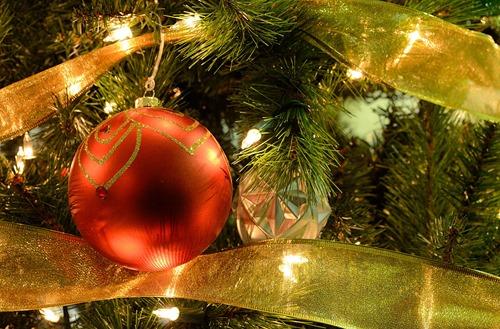 HolidayTreeCloseUpPhoto3