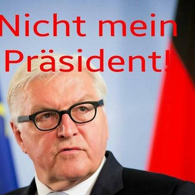 steinmeier_nicht_mein_praesident