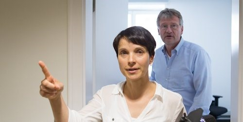 frauke_petry_jörg_Meuthen