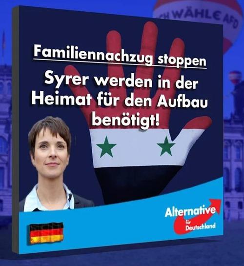 Frauke Petry AFD Familiennachzug stoppen Syrer werden in der Heimat für den Aufbau benötigt