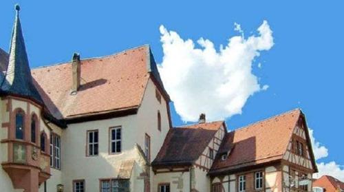 tauberbischofsheim-afd