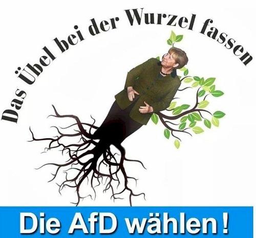 das_uebel_bei_der_wurzel_packen