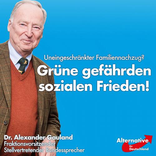 gruene_gefährden_sozialen_frieden