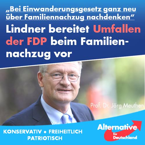 fdp_umfaller_familiennachzug