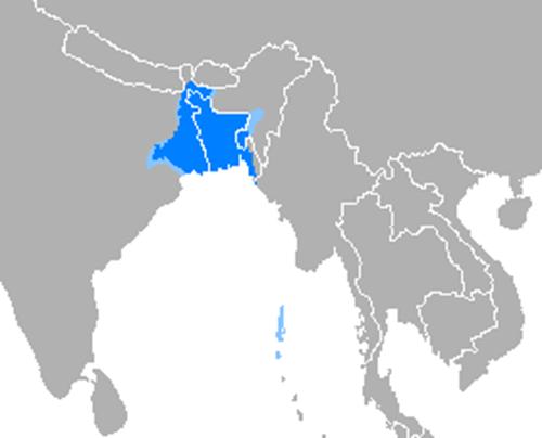 Idioma_bengalí