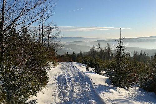 Beskid_Sądecki_in_winter_2016_05 (1)[6]