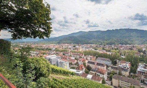 Schlossberg_Freiburg