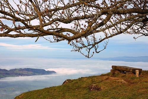 Seebodenalp-foggy_Zuger_See