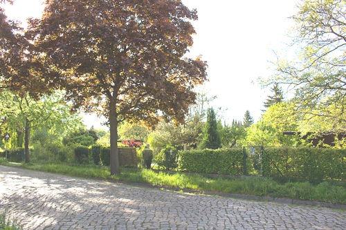 Fontanestraße,_Kleingärten