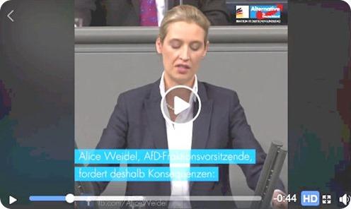 alice_weidel_respekt