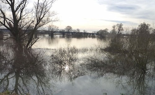 Hochwasser_an_der_Donau_3
