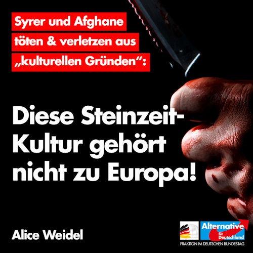 steinzeitkultur_europa
