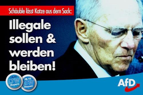 schäuble_katze_sack