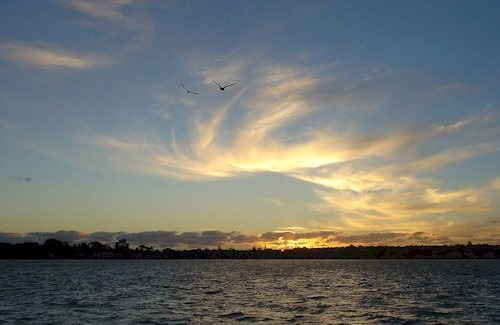 Sunset_With_Birds