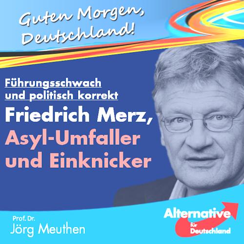 friedrich_merz_heilsbringer