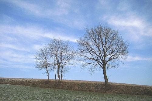 Winter_in_Bavaria_2