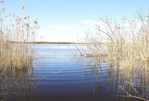 Ahijärv,_2008
