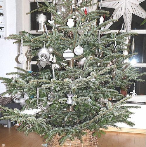 Weihnachtsbaum_2017