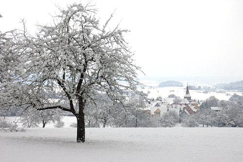 Egenhausen