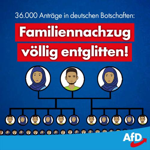 hoecke_familiennachzug