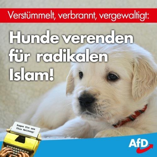 islamischer_hundehass