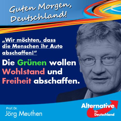 gruene_auto_abschaffen