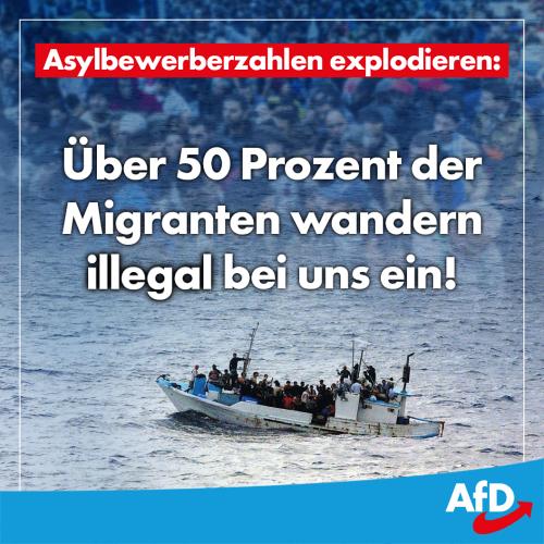asylbewerberzahlen
