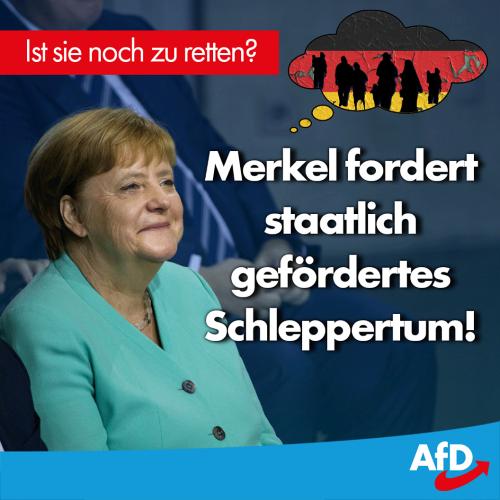 merkel_schlepper