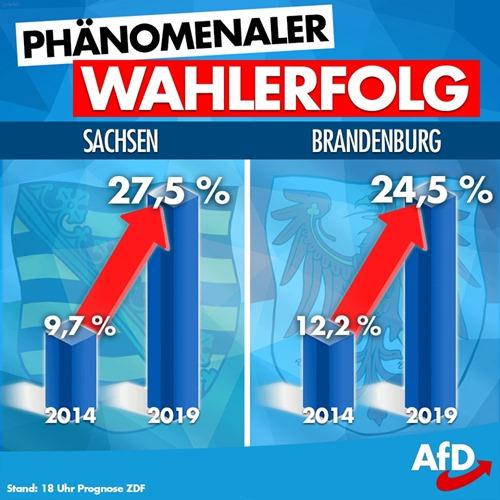 afd_wahlerfolg