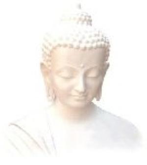 Yoga & Meditation