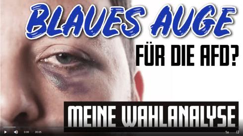 sellner-wahlanalyse+1