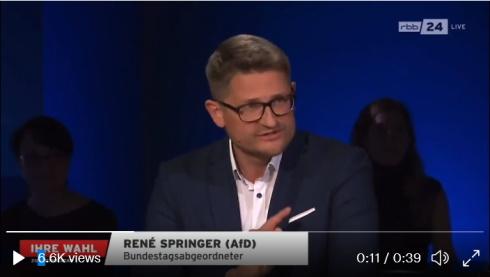 rene-springer